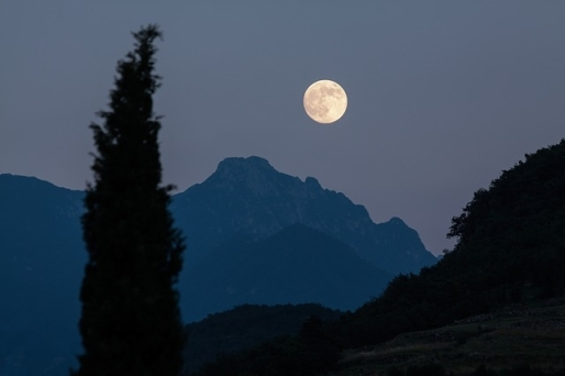 79919-The-Distant-Moon