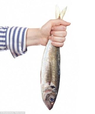 fish oil.jpg